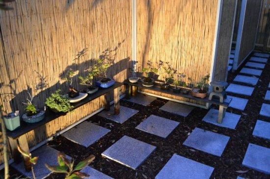 family garden 008a