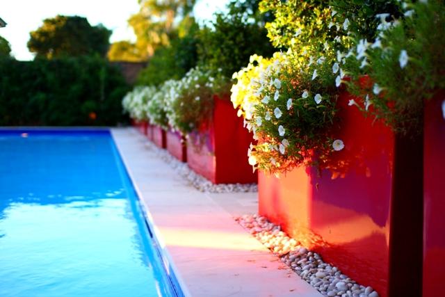 Pool Garden Makeover 005a