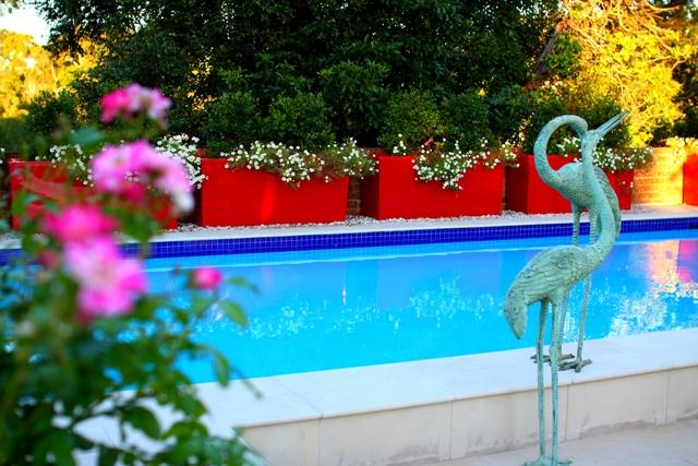 Pool Garden Makeover 008a