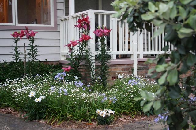 Seaside cottage garden 011a