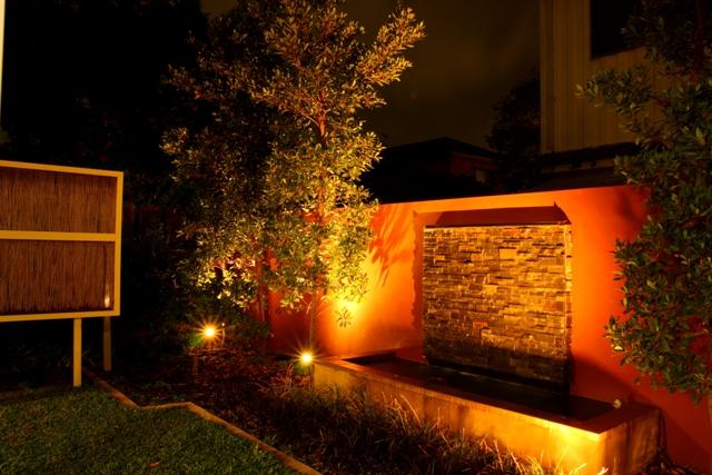 Night garden 006